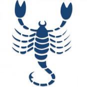 Scorpion (20)
