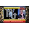 Scorpion - horoscopul saptamanii 5-11 Septembrie