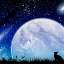 Horoscopul lunar de astăzi 13 Martie