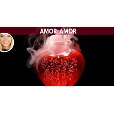 Amor Amor