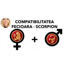 Compatibilitatea Fecioara - Scorpion în dragoste si casatorie
