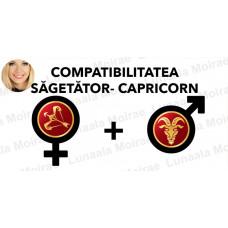 Compatibilitatea Sagetator  - Capricorn  în dragoste si casatorie