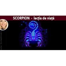 Scorpion - lecția de viață